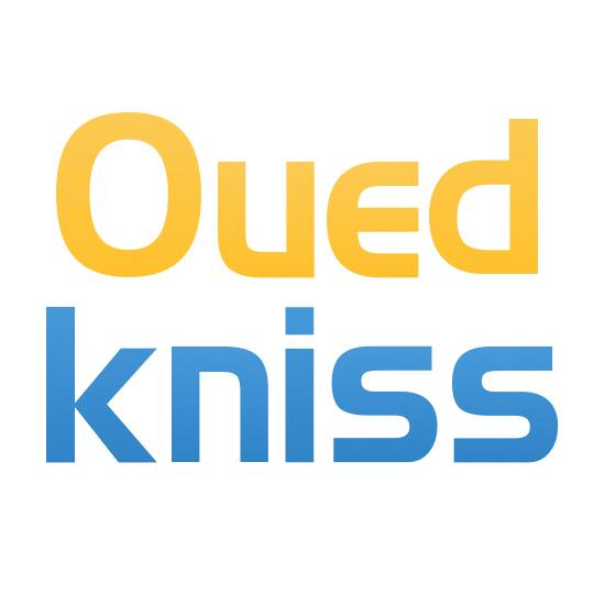 ouedkniss-logo