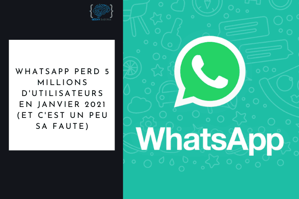 Whatsapp perte utilisateurs
