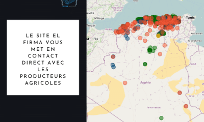 El Firma site algérie